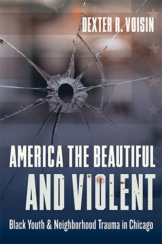 America the Beautiful and Violent