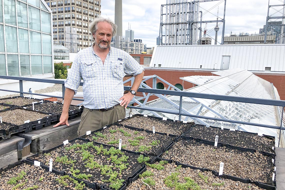 Sean Thomas stands on the roof of the Earth Sciences building in front of some seedlings with the city skyline and cn tower in the background