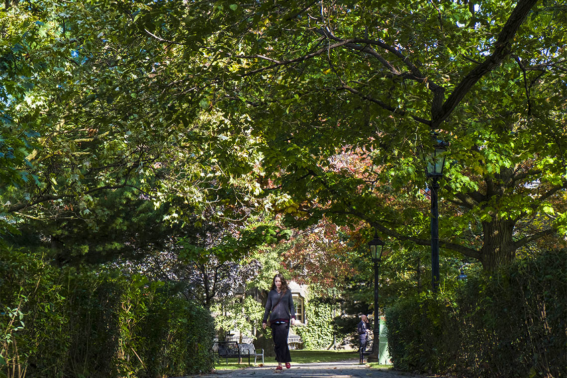 A student walks underneath a canopy of trees at St. George campus
