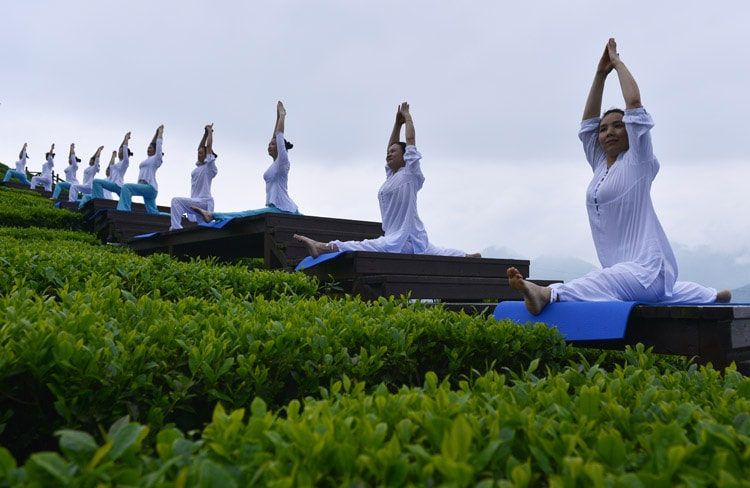 Women doing yoga in the early morning