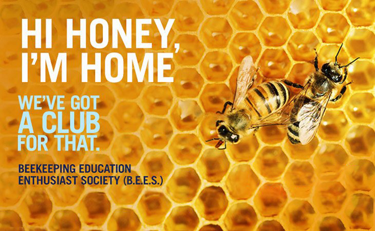 """Bees on a honeycomb, with the text """"Hi honey, I'm home. We've got a club for that. Beekeeping Enthusiast Education Society (B.E.E.S.)"""
