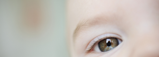 close up of a baby's face centered on their eye